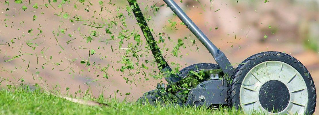 Il Tagliaerbe Manutentori Del Verde